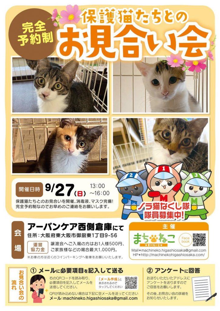 【9月27日】完全予約制!保護猫たちとのお見合い会