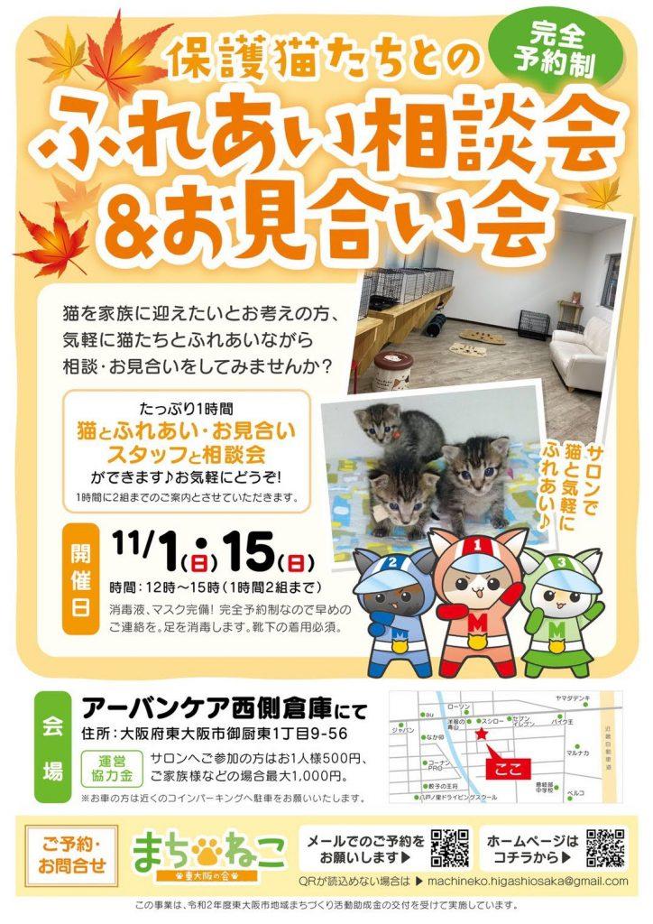【11月1日/15日】保護猫たちとのふれあい相談会&お見合い会