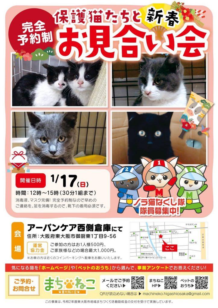 【1月17日(日)】保護猫たちとのお見合い会