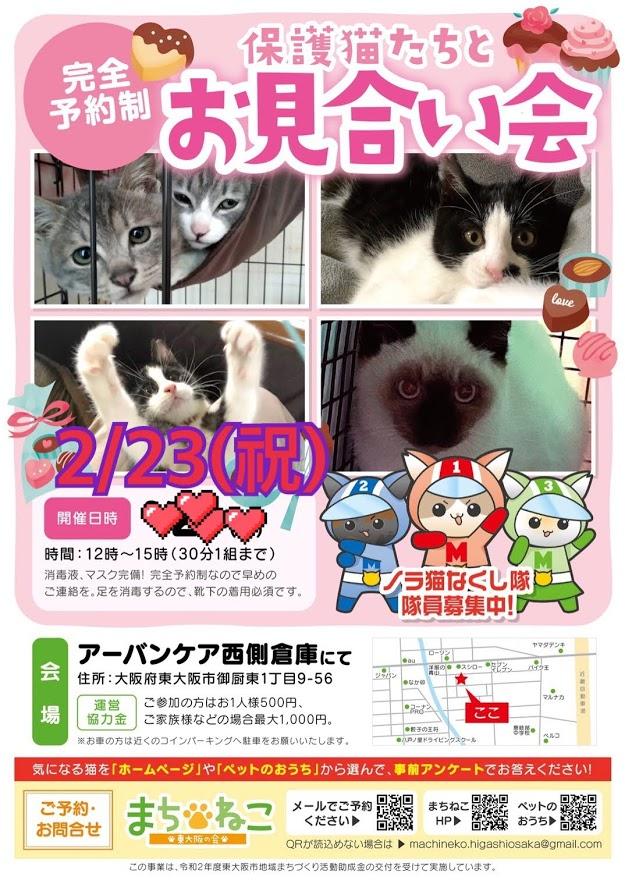予約締切ました【2月21日(日)23日(祝)】保護猫たちとのお見合い会