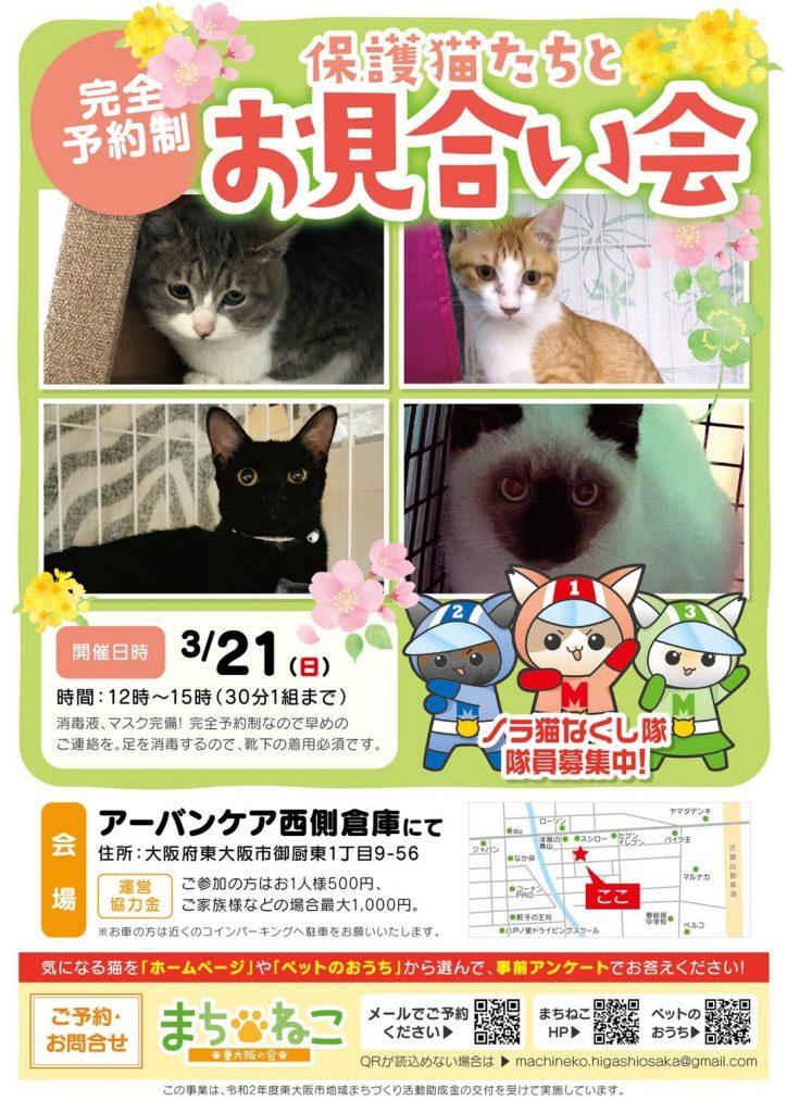 受付は終了しました【3/21(日)】保護猫たちとのお見合い会