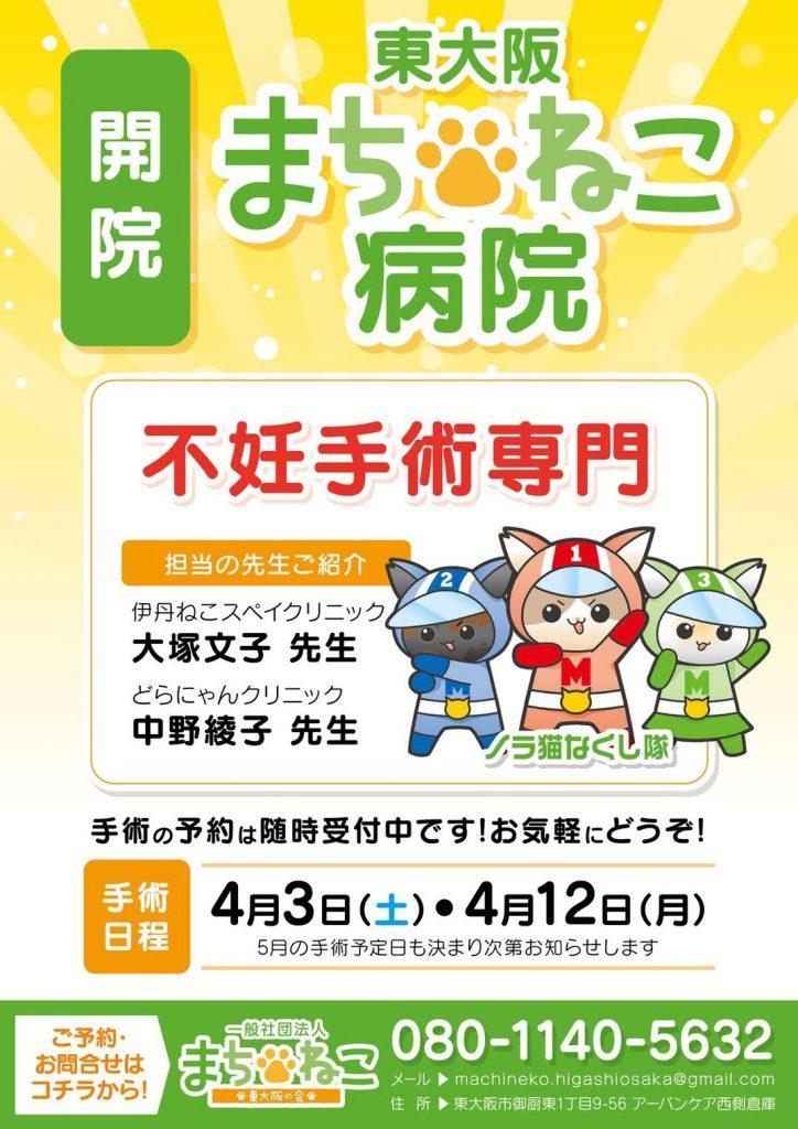東大阪市ねこ(野良猫)の不妊手術助成金について